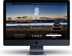 Website Design Example Cheap - FREE Domain name